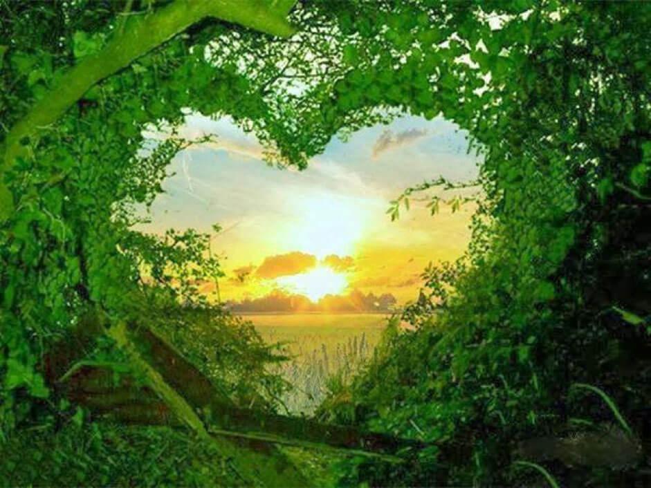 Sevginin Sınırsız Gücü